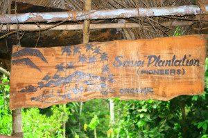 Savoi Plantations