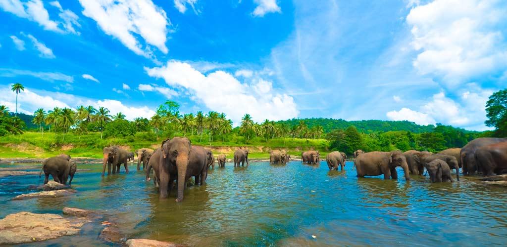 10 Sri-Lanka