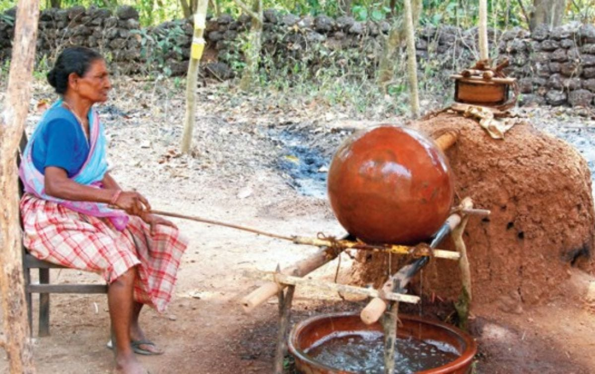 A Woman in making feni from Cashew Apple Juice the process also known as Distilling,