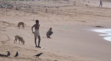 Tourists and Shack Employees Have Turned the South Goa Beaches into a Open Toilets?